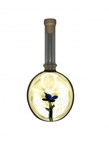 Sticla Floare